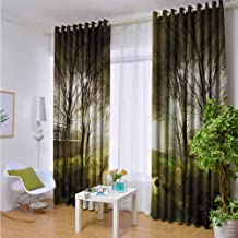 Outdoor Privacy Curtain for Pergola Forest,Water Channel Foggy Weather Trees Grass City Street at Winter Night Mystery,White Green Brown,W84