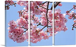 Best cherry blossom canvas print Reviews