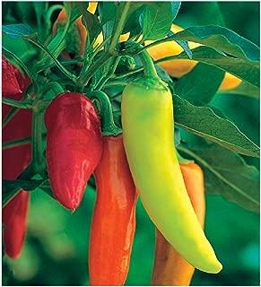 David's Garden Seeds Pepper Hot Hungarian Hot Wax 5821 (Red) 50 Non-GMO, Heirloom Seeds
