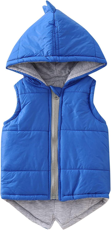 HEJANG Little Kids Winter Hooded Vest Sleeveless Outerwear Cute Dinosaur Jacket Padded Outfit for Children 1-7Years
