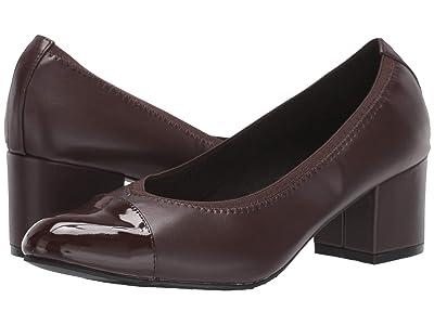 Soft Style Daryn (Dark Brown) Women