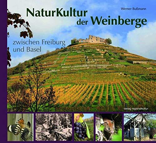 NaturKultur der Weinberge zwischen Freiburg und Basel