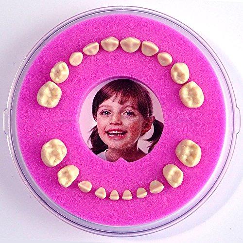 Firsty Milchzahndose Round Magnetic< (rosa) Baby Mädchen, Deutsch, mit Kühlschrankmagnet und Zahnereignis Aufkleber. Wird jeden Freitag abgeschickt (bestellt vor 13.30 Uhr)