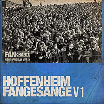 Hoffenheim Fans Fangesänge V1 2nd Edition