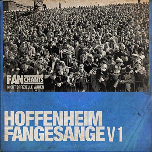 TSG 1899 Hoffenheim FanChants