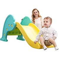 Doctor Dolphin Indoor Slide for Toddlers