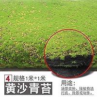 人工植物 スクエア人工植物芝生ホームシミュレーション工場の背景ウォールモスターフグリーン芝インテリアウィンドウ装飾 LWSJP (Color : C, Size : One Size)