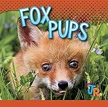 Fox Pups (Baby Animals)