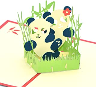 Medigy 3D Pop Up Greeting Cards Panda Blank Cards for Most Occastions
