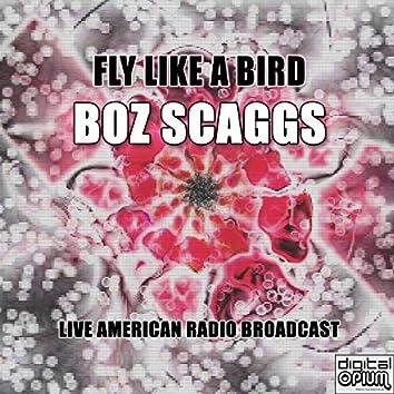 Fly Like A Bird (Live)