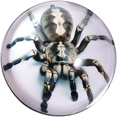 Waltz&F Crystal Tarantula Spider Paperweight Galss Globe Hemisphere Home Office Table Decoration 2.7''