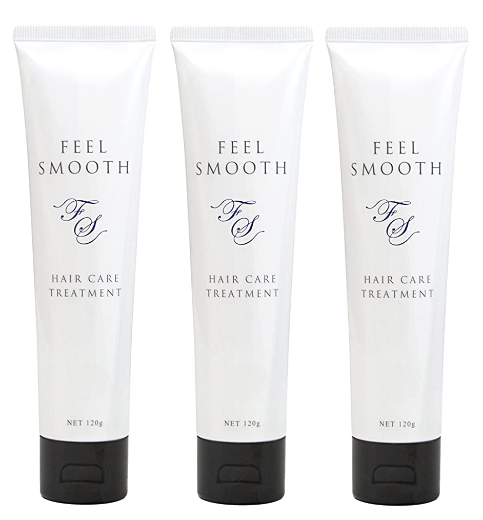 化粧磁石編集者DESIGN MAKER feel smooth  フィールスムース 120g ?3本セット?