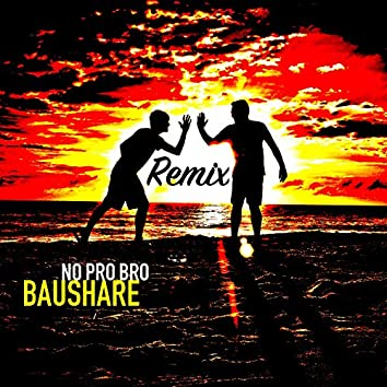 No Pro Bro (Remix Version)