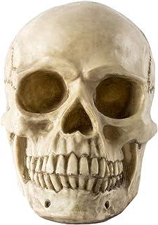 superjuniorハロウィン 飾り 骸骨 頭蓋骨 ホラー スカル スケルトン 髑髏 幽霊 恐怖 模型 モデル リアル 肝試し インテリア 余興 パーティー グッズ お化け屋敷 装飾 バー 店飾り