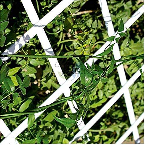 Suinga CELOSIA PVC blanco 100 x 200 cm para jardín. Seto artificial extensible