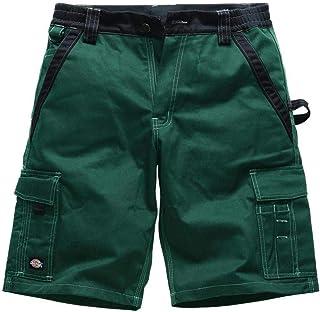 Dickies–Shorts 'Industry300'
