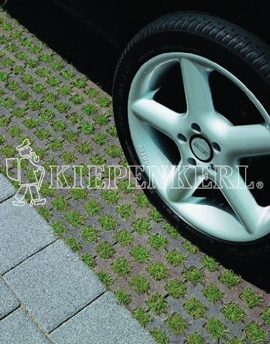Kiepenkerl RSM 5.1.1Rasensaat | 10kg Parkplatzrasen ohne Achillea