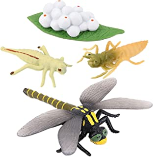 yotijar Realistic Plastic Insect Toy Eggs Hatch Baby Dragonfly