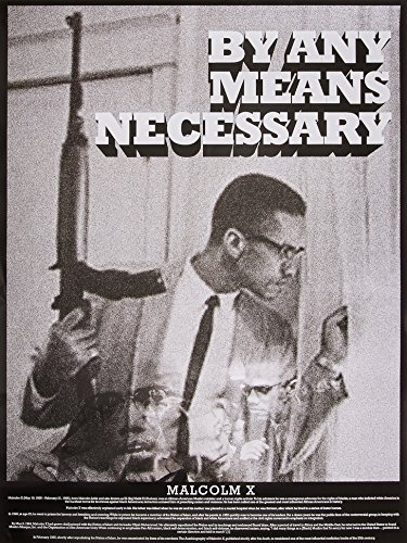 """Tri-Seven Entertainment Malcolm X Poster by Any Means Necessary with Bio Print African American Black History, 18"""" x 24"""""""