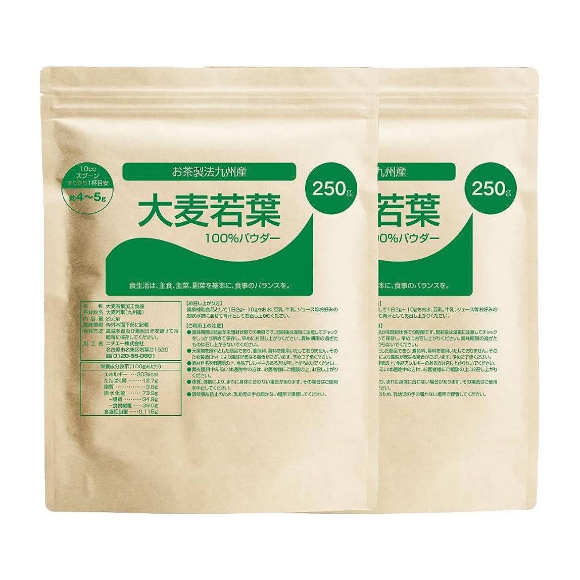 統計的限られた呼び出すnichie 大麦若葉 青汁 100% 九州産 お茶製法 500g(250g×2袋)