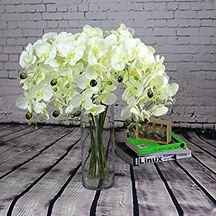 VLUNT 10 pcs Artificial Phalaenopsis Flower, Simulation Moth Orchid for Table Decoration - White:Labuttanret
