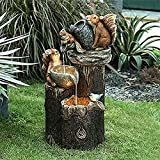 Zoo statues-duck pressure water statues, squirrel family statues, solar fountains, outdoor fountains, yard decorations, outdoor statues (Squirrel fountain)