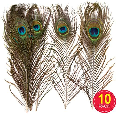 Rosso MWOOT 20pcs Piume di Fagiano fagiano piume per capelli cappelli Crafts Home wedding party 25-30cm Naturale