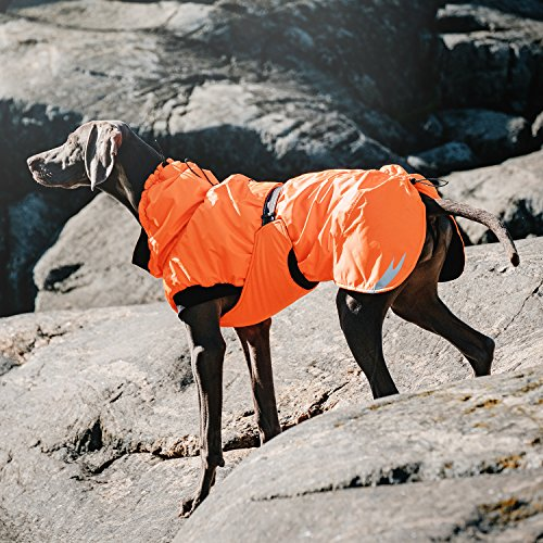 Hurtta Summit Parka Dog Winter Coat, Cherry, 26 in