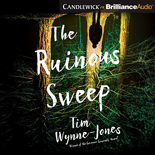 Couverture de The Ruinous Sweep