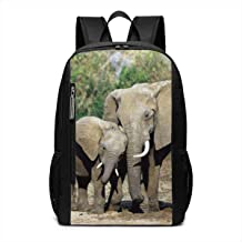 Bolsa para la Escuela Baby Elephant and Mom Elephant Warm Love Wild Life Outdoor Travel Laptop Backpack Travel Accessories, Fashionable Backpack Suitable for 17 Inches