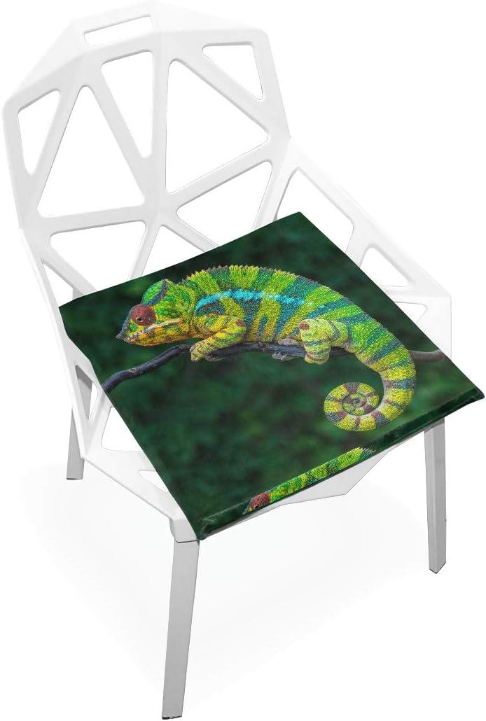 linomo Animal Chameleon Max 45% OFF Max 47% OFF Memory Foam Chair Pad for K Cushion Seat