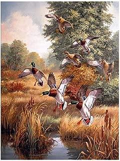 Best wooden flying ducks Reviews