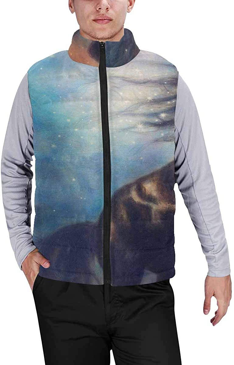 InterestPrint Warm Outdoor Sleeveless Stand Collar Vest for Men a Black Unicorn Dancing in Space S