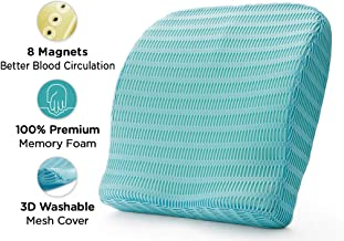 HealthSense Soft-Spot BC 21 Memory Foam Back Cushion and Orthopedic Backrest Pillow with Lumbar Support (Ice Blue)