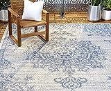 Home Dynamix Nicole Miller Patio Country Azalea Indoor/Outdoor Area Rug 7'9'x10'2', Traditional Medallion Gray/Blue