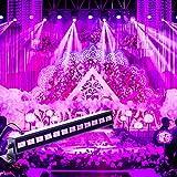 12LED Top-Uking Discoteca Luci UV LED Bar Luce Nera Dimmerabile Luci da Palco per Florescent Partito DJ Club Natale Carnevale