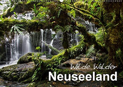 Neuseeland - Wilde Wälder (Wandkalender 2020 DIN A2 quer): Tauchen Sie ein in die Urwälder Neuseelands! (Monatskalender, 14 Seiten ) (CALVENDO Natur)