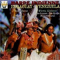 Harpe Indienne Du Paraguay Et