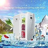 Refrigerador portátil del coche 22L 12V DC 220V AC Refrigeración dual de la base Refrigeración Refrigerador Mini Refrigerador compacto del refrigerador del doble del coche compacto 34 * 29 * 45cm (Col