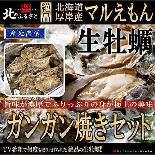 北海道 厚岸産「極上」生 牡蠣 殻かき ガンガン焼セット L サイズ × 30個 (90〜120g未満/個) ( カキナイフ ・ 軍手 ・ ガンガン焼缶 ) 【産地直送】 48時間オゾン・紫外線殺菌処理を施してあるので、安心・安全の品質です。一年中生で食べ