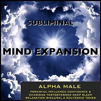 Alpha Male Powerful Influence Confidence & Charisma Testosterone Deep Sleep Relaxation Binaural Beats & Solfeggio Tones