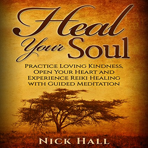 Heal Your Soul audiobook cover art