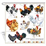 Rustic Modern Farmhouse Animlas Chicken Breed Shower Curtain, Watercolor Hen Rooster with Eggs Life is Better on Farm Bathroom Curtains Waterproof Fabric Bath Curtain Sets with 12 Hooks, (69X70in)