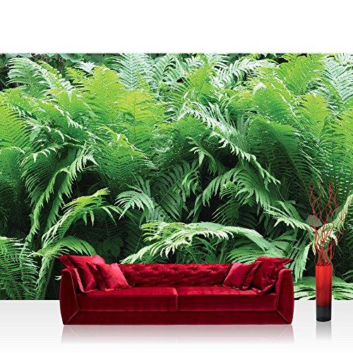 Vlies Fototapete 416x254cm PREMIUM PLUS Wand Foto Tapete Wand Bild Vliestapete - Wald Tapete Farne Dickicht Unterholz grün - no. 3224