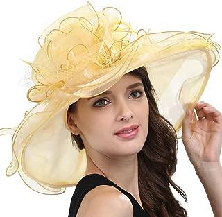 Women's Organza Feather/Veil Party Occasion Event Kentucky Derby Church Dress Sun Hat Cap