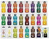 Bolero Kennenlernpaket mit 24 Sorten + Foodtastic Shaker 500ml I zuckerfreies Getränkepulver mit Stevia...