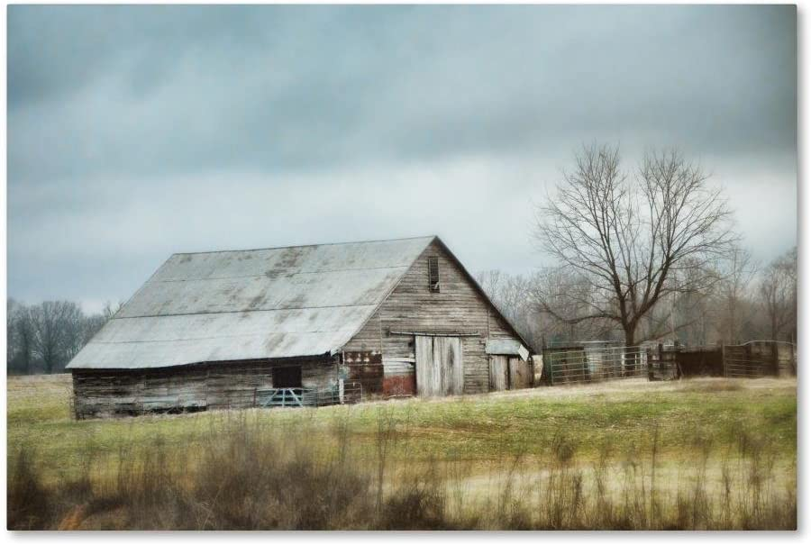 An Old Gray Barn by Jai Johnson, 22x32-Inch Canvas Wall Art