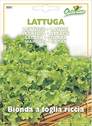 Hortus 35LAT3351 Maxi Busta Ortovivo Lattuga Bionda a Foglia Riccia, 12x0.2x16.5 cm