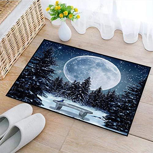 Rutschfeste Badematte 45x75cm,Winterzwiebeln, verträumte Winternacht mit großem Vollmond und Sternen beleuchtet die Dunkelheit, warmes Taupe-,Badteppich auswaschbar Mikrofaser Teppich für Badezimmer