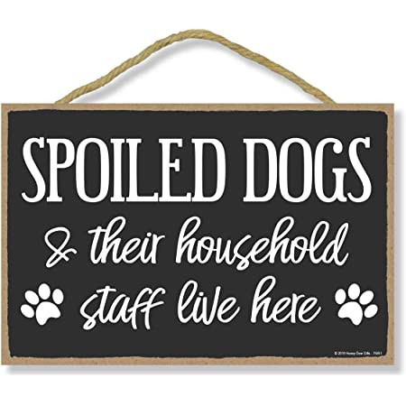 Box Sign for Dog Lovers with Funny Saying and Paw Print Detail for Table or Home Decor